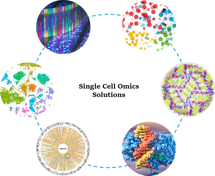 1-Single-Cell-Omics-Solutions-1.png